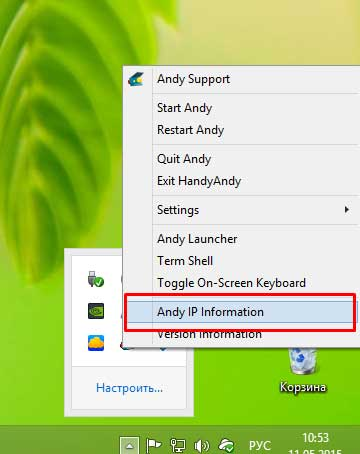 Andy IP Information